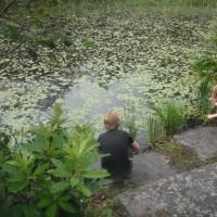 Liss Ard Estate and Gardens, Skibbereen